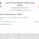 Hlinik v mozku autistu